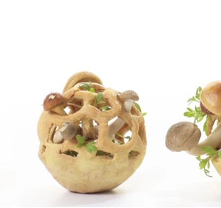 Edible Growth: sustainable and healthy aperitifs in 3D