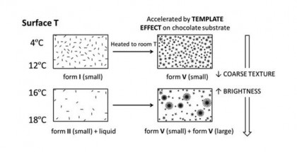cover chocolate's study UB