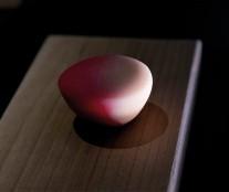 wagashi-pink-junichi-mitsubori