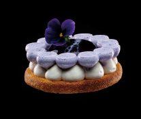 Vanilla violet cheesecake by William Werner