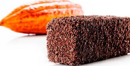 Ghana Chocolate Cake by Bordas with cocoa