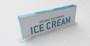 Organic Gastronaut Ice Cream