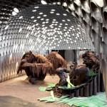 oraguntans' chocolate sculptures
