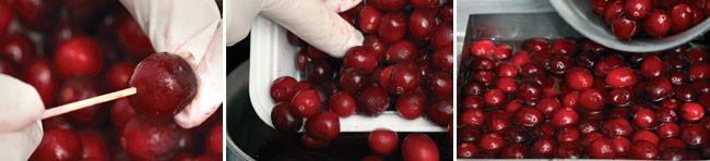 cranberry-gelee-method