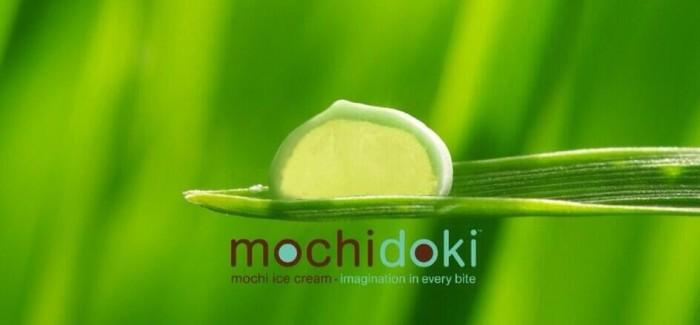 Mochi and churro, the new companions for ice cream