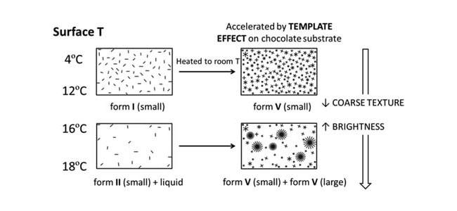 Velvet chocolate crystals in a scientific study