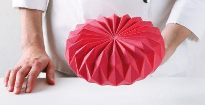 Origami entremet by Dinara Kasko