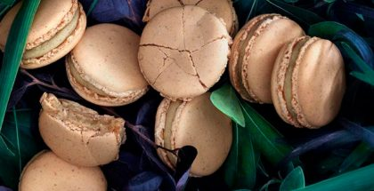 macarons over some leaves
