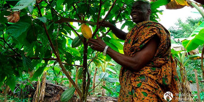 A study poses incentives to eliminate child labor in cocoa production in Ghana