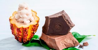 Presentation of the wholefruit chocolate by Barry Callebaut
