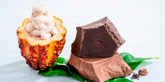 Barry Callebaut launches a chocolate made 100% with cocoa fruit