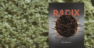 Radix by Paco Torreblanca cover