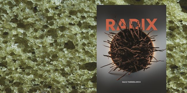 Radix, the journey to the essence of Paco Torreblanca's pastry