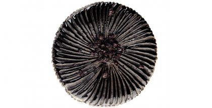 Black sesame galette by Cédric Grolet