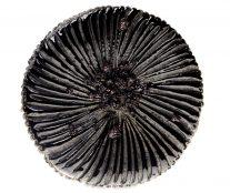 Black sesame galette de rois by Cédric Grolet