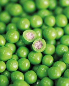 Little sweet peas by Paul Kennedy