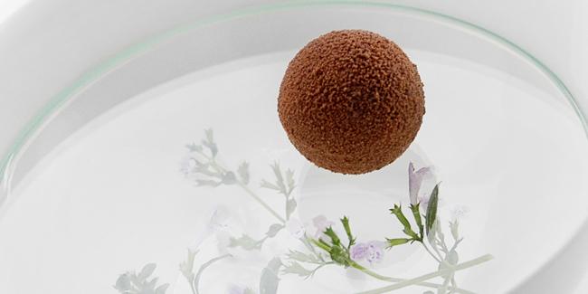 Chocolate mint bonbon by Ronny Emborg