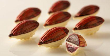 Cocoa Bean Bonbon with Chipotle Raspberry Ganache and Gelatin