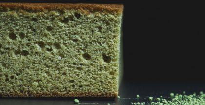 Castela spongecake by Paco Torreblanca