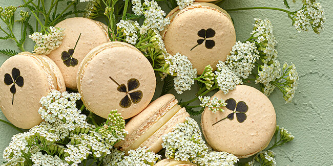 Pierre Hermé invites you to a 'promenade' through nature in his latest collection